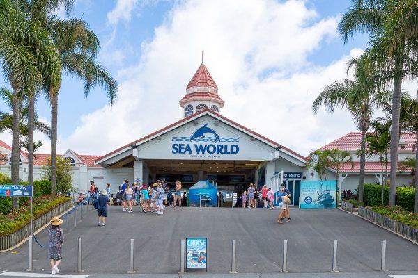 SeaWorldBanner